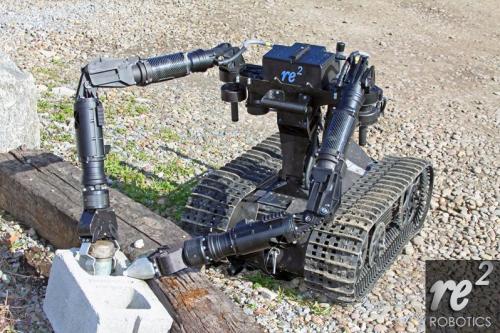RE2 EDO Robot