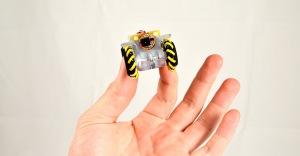 HoneyBee pipe inspection robot